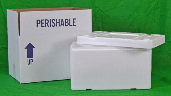 Small Foam Insulated Shipper