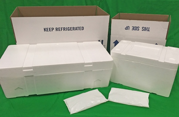 Insulated Foam Containers / Shippers
